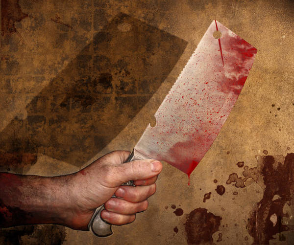 Bloody Fist Photograph - Cleaver by Barnaby Chambers