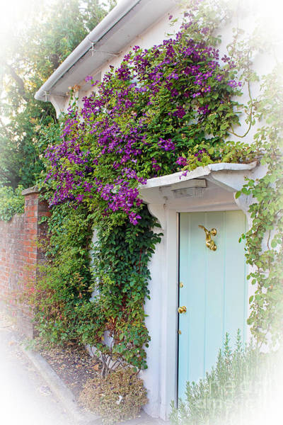Ornamental Fish Photograph - Clematis Around The Door by Terri Waters
