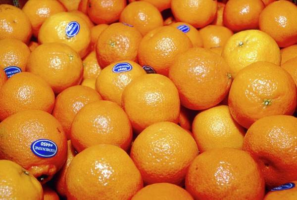 Hybrid Photograph - Clementines by Annabella Bluesky/science Photo Library