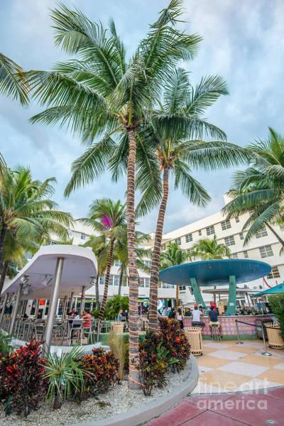 Multi-storey Wall Art - Photograph - Clevelander Hotel Illuminated Palms Sobe Miami Florida by Ian Monk