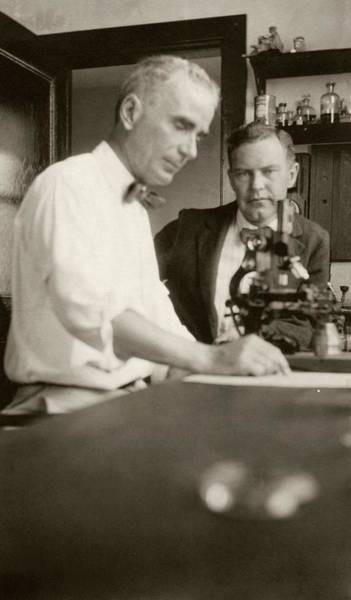 1921 Photograph - Clews And Chambers by American Philosophical Society