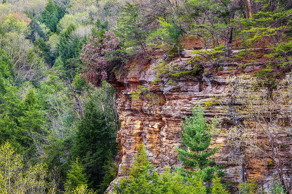 Photograph - Cliff Formations by Dale Kincaid