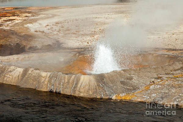 Photograph - Cliff Geyser In Black Sand Geyser Basin by Fred Stearns