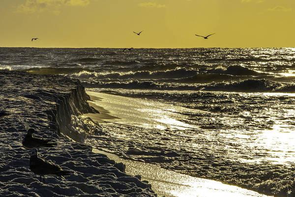 Digital Art - Cliffs Of Gulf Shores by Michael Thomas