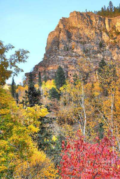 Photograph - Cliffside Color by Anthony Wilkening