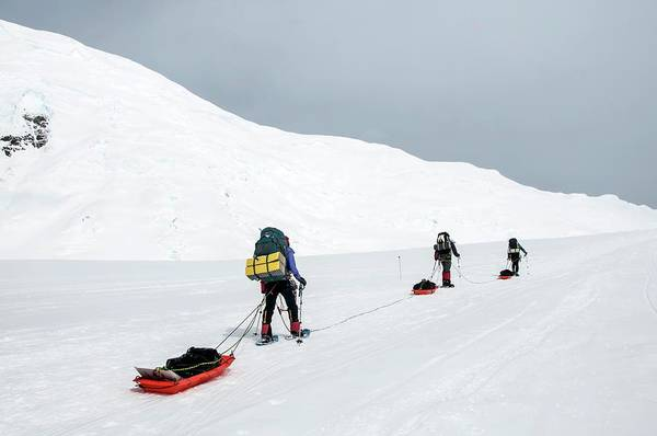 Wall Art - Photograph - Climbers Drag Sleds Of Gear On Mount by Alasdair Turner