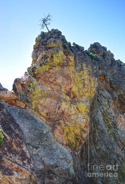 Photograph - Climbing To The Top by Anthony Wilkening