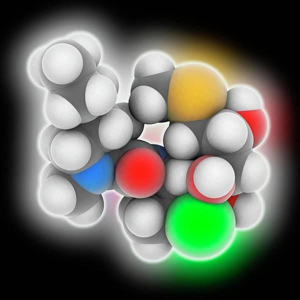 Infection Wall Art - Photograph - Clindamycin Drug Molecule by Laguna Design