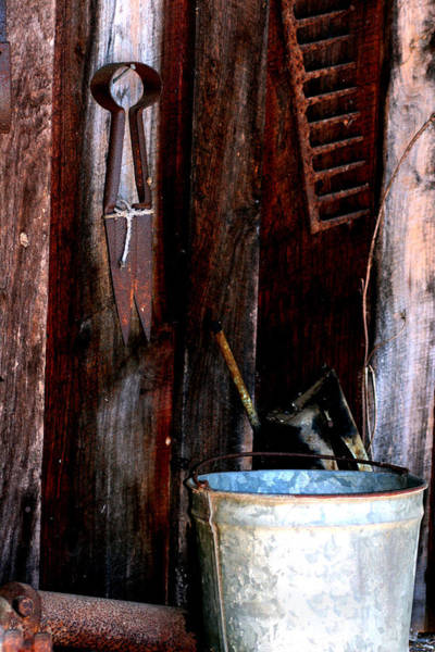Photograph - Clippers And The Bucket by Lesa Fine