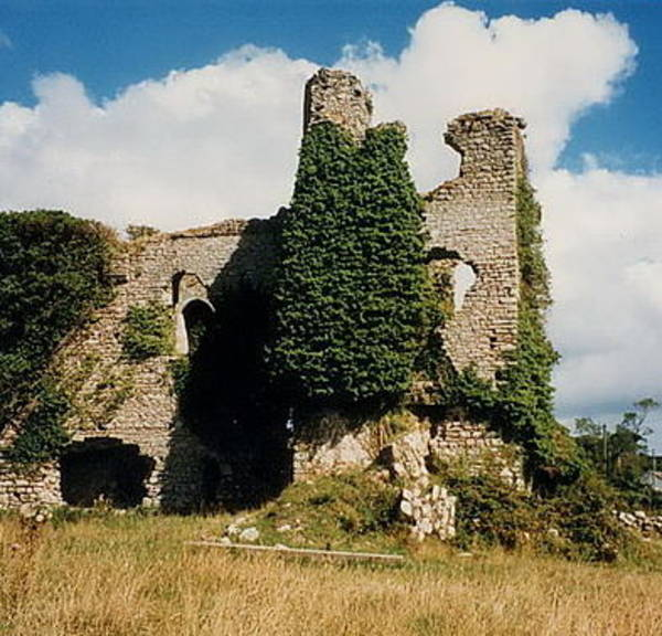 Photograph - Clonmore Castle Carlow by Val Byrne