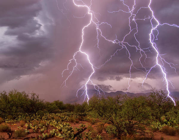 Electric Peak Wall Art - Photograph - Close Lightning Strikes by Roger Hill/science Photo Library