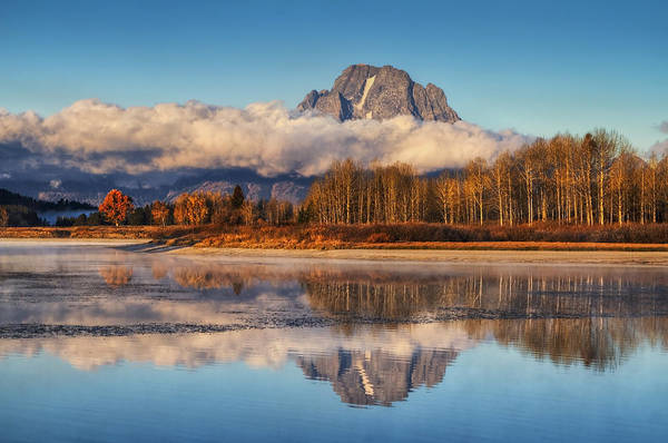 Oxbow Park Photograph - Close Of Autumn by Mark Kiver