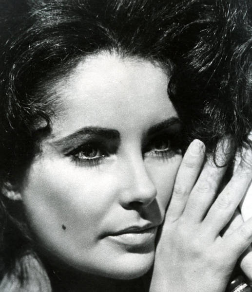 Wall Art - Photograph - Elizabeth Taylor by Retro Images Archive