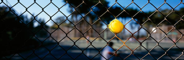 Chain Link Photograph - Close-up Of A Tennis Ball Stuck by Panoramic Images