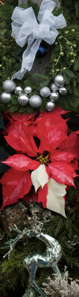 Wall Art - Photograph - Close-up Of Christmas Ornaments by Panoramic Images