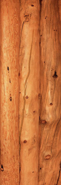 Wall Art - Photograph - Close-up Of Log House, Oregon, Usa by Panoramic Images