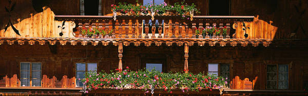 Bannister Wall Art - Photograph - Close-up Of Potted Plants On Balcony by Panoramic Images