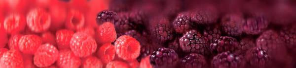 Wall Art - Photograph - Close Up Of Raspberries by Ikon Ikon Images