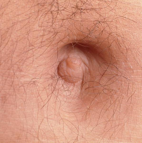Close-up Of The Navel (belly Button) Of A Man Art Print
