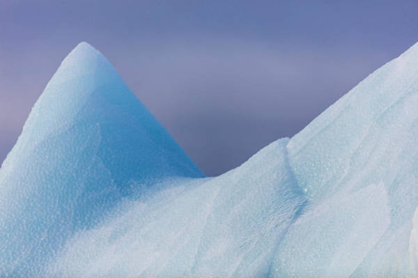 Tundra Wall Art - Photograph - Close Up On An Iceberg, Spitzbergen by Raffi Maghdessian