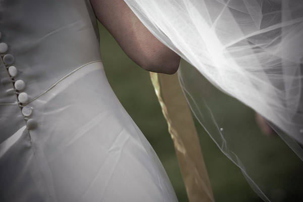 Wall Art - Photograph - Close-up, Rear View Of A Brides by Ron Koeberer