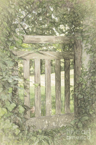 Photograph - Closed By Nature by Elaine Teague