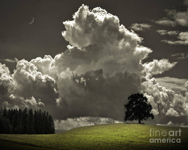 Photograph - Cloud No.9 by Edmund Nagele