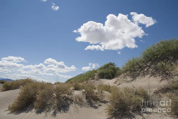 Photograph - Cloud Over Sand Dunes by Dan Suzio
