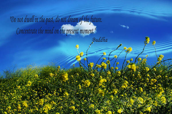 Photograph - Cloud Reflection With Buddha Quote by Sarah Broadmeadow-Thomas