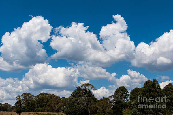 Photograph - Clouds 4 by Fran Woods