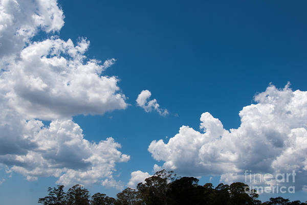 Photograph - Clouds 7 by Fran Woods