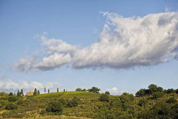 Photograph - Clouds Above Tuscany by David Letts