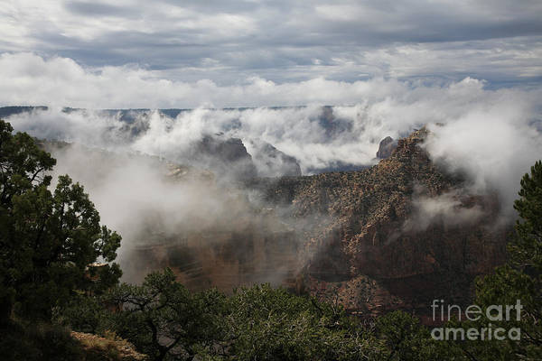 Wall Art - Photograph - Clouds In The Canyon by Timothy Johnson
