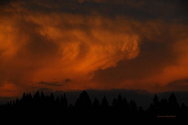 Wall Art - Photograph - Clouds Of Fire by Donna Blackhall