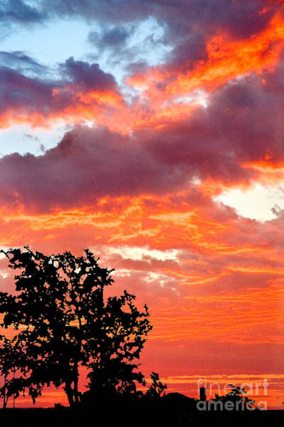 Photograph - Clouds On Fire by Mae Wertz