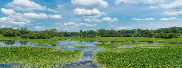 South Buffalo Photograph - Clouds Over South Park Lake, South by Panoramic Images