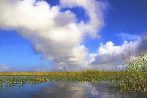 Photograph - Clouds Over The Grasses by Alice Gipson