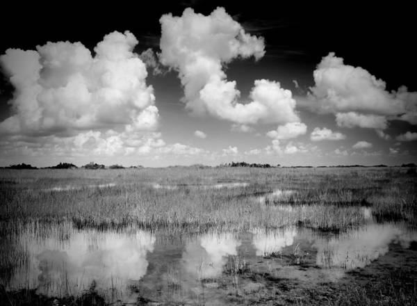Everglades National Park Photograph - Clouds Reflection by Rudy Umans