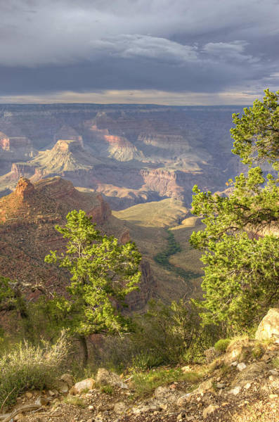 Wall Art - Photograph - Cloudy Bright Angel Trail II by Ricky Barnard