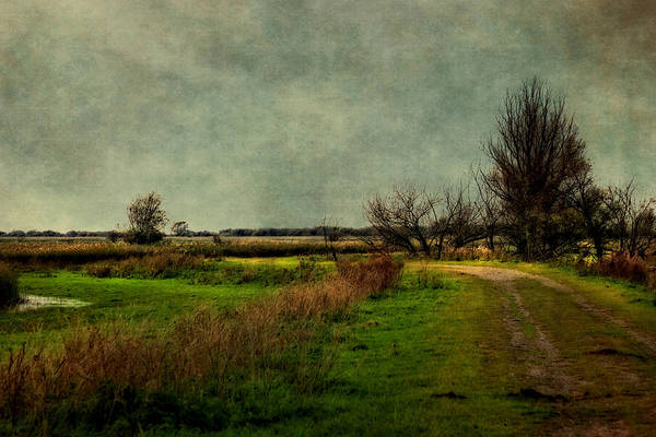 Photograph - Cloudy Day by Annie Snel