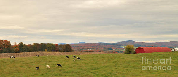 Photograph - Cloudy Pasture by Charles Kozierok