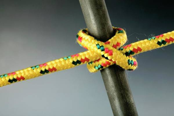 Knot Photograph - Clove Hitch Knot by Steve Percival/science Photo Library
