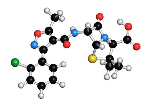Infection Wall Art - Photograph - Cloxacillin Antibiotic Drug Molecule by Molekuul
