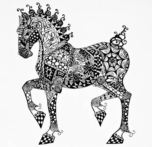 Drawing - Clydesdale Foal - Zentangle by Jani Freimann