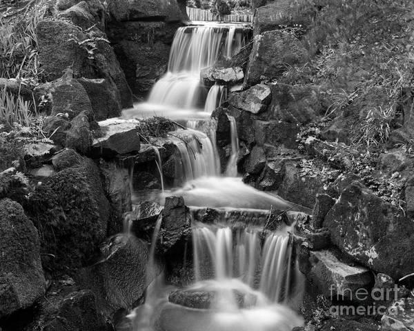 Photograph - Clyne Park Waterfall by Paul Cowan