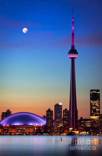 Cn Tower Wall Art - Photograph - Cn Tower At Dusk by Inge Johnsson