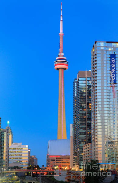 Cn Tower Wall Art - Photograph - Cn Tower By Night by Inge Johnsson