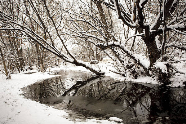 Photograph - Coal Creek 2 by Marilyn Hunt