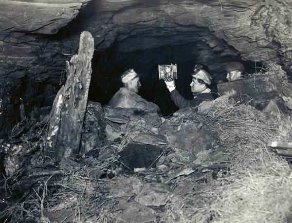 Sentinel Photograph - Coal Miners With A Canary by Miriam And Ira D. Wallach Division Of Art, Prints And Photographs/new York Public Library