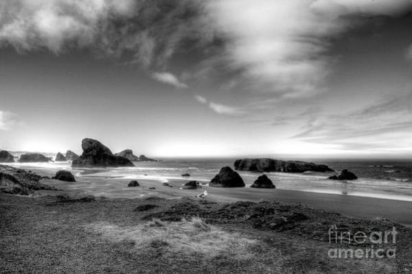 Photograph - Coast Of Dreams 6 Bw by Mel Steinhauer